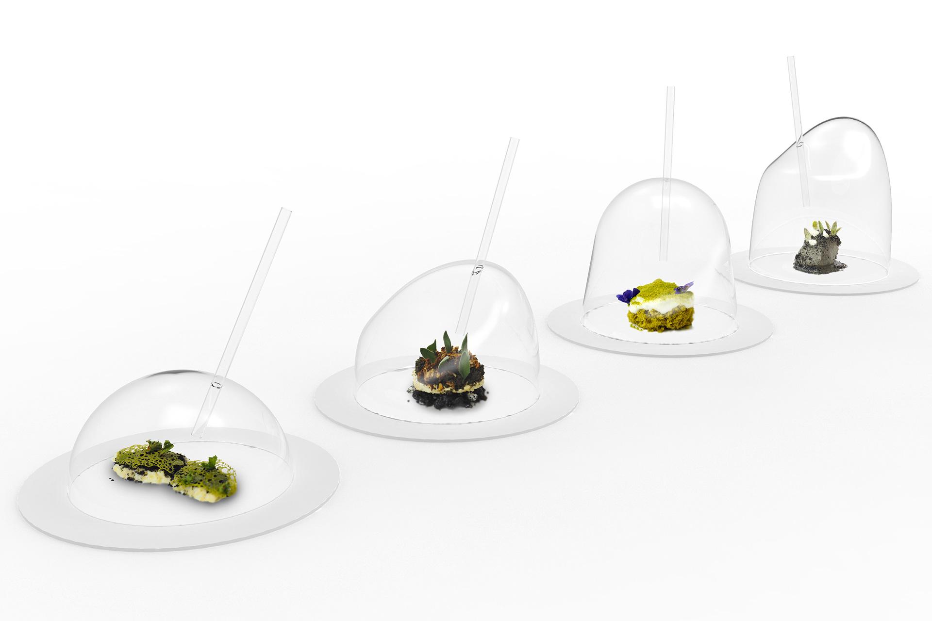 master_design_culinaire_food_precieux_teritwa_alpes_plat_vegetation_cloche_verre